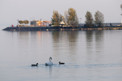 Balatonfelvidéki-őszi-túra-276
