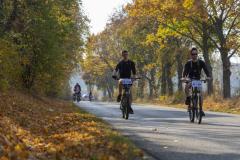 Balatonfelvidéki-őszi-túra-292