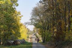 Balatonfelvidéki-őszi-túra-330
