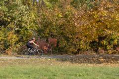 Balatonfelvidéki-őszi-túra-351