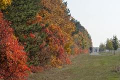 Balatonfelvidéki-őszi-túra-368