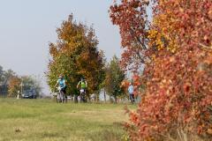 Balatonfelvidéki-őszi-túra-369