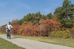 Balatonfelvidéki-őszi-túra-372