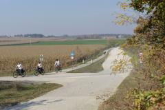 Balatonfelvidéki-őszi-túra-378