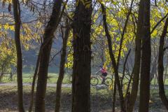 Balatonfelvidéki-őszi-túra-384
