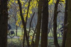 Balatonfelvidéki-őszi-túra-385