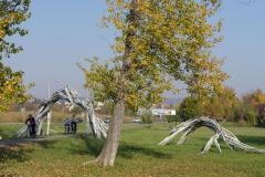 Balatonfelvidéki-őszi-túra-412