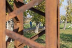 Balatonfelvidéki-őszi-túra-417