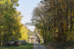 i-oszi-bringa-tura-fraunholcz-attila-osszes-00250